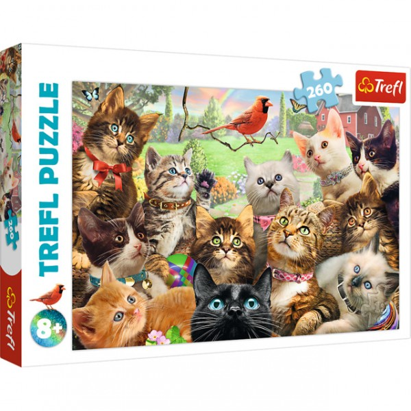 Puzzles - 260 - Kittens / MGL